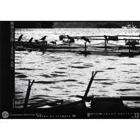 無辜なる海 -1982年 水俣-【DVD:個人視聴用】