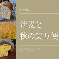 <送料込み>新麦と秋の実り便   〜2019ユメカオリ〜