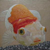 金魚1[山下三千夫]
