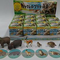 シャクレルプラネット4 BOX版(12個入り)
