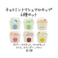 チョコミントマシュマロカップ6種セット(簡易包装 冷蔵 送料別)