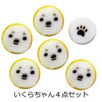 いくらちゃん4袋(簡易包装 送料込)