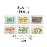チョコミン6種セット(簡易包装 冷蔵 送料別)