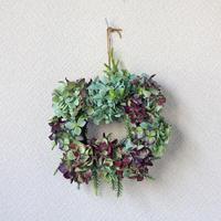 紫陽花 / 杉の葉 / ドライフラワー リース  ozf-037