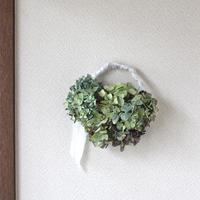 紫陽花ドライフラワー ホワイトリボン グリーン系 リース  ozf-029