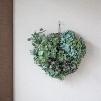 紫陽花ドライフラワー×ユーカリ グリーン系 リース ozf-017
