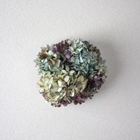紫陽花 (アジサイ) ドライフラワーリース 可愛いサイズ  ozf-059