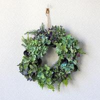 紫陽花 / 杉の葉 / シューフライ/ ドライフラワー リース  ozf-038
