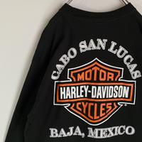 ハーレーダビッドソン メキシコ製 ロンT  立体プリント ロングTシャツ ロゴ