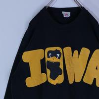 アイオワ ホークアイズ スウェットVintage IOWA Hawkeyes