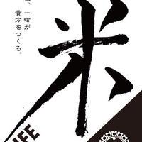 米LIFE2020 【3kg】  [2020年福岡県産胚芽米]