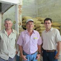 ベラクルース農園 / コロンビア 100g