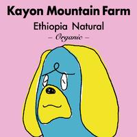 [オーガニック]エチオピア/カイヨンマウンテンファーム -ナチュラル- 300g
