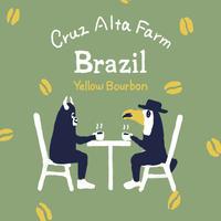ブラジル /クルスアルタファーム 200g