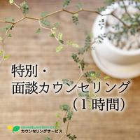 特別・面談カウンセリング(1時間)