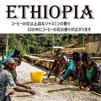 【国名】エチオピア 【地区】イルガチェフェ ゲデブ ウォッシュ 450g 深煎り