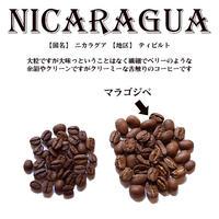 【国名】ニカラグア 【地区】ティピルト 420g 深煎り