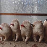 祝い鳥(ヒナ)/各1羽