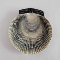 ボルダロ・ピニェイロ 貝の飾り皿(B)