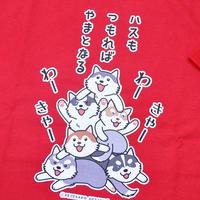 ハスつもTシャツ(カラー)
