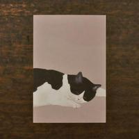 ささきめぐみ ポストカード 「ハチワレ猫」