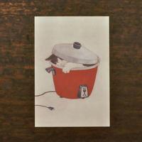 ささきめぐみ ポストカード 「台湾鍋猫」