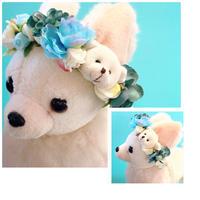💠花冠💠  White Bear