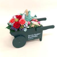 【プリザーブドフラワー】花車/レッド/じょうろにとびこむピーター