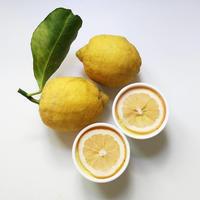 Rawレモンムース