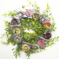 花畑リース (30cm)