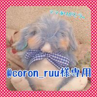 @coron_ruu様専用ブルーちゃん