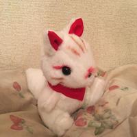 白狐ちゃん(稲荷ぐるみ)