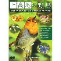 「上高地の野鳥」DVD