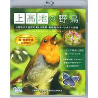 「上高地の野鳥」Blu-ray