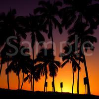 Hawaii 写真データ  3872×2592