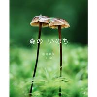写真絵本『森のいのち』