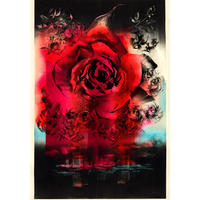 New York の薔薇  Koharu 小春 2002年