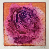 One hundred rose  Purple Koharu 小春 2004年