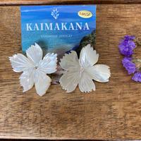 Kaimakana shell flower pierce