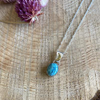 swell jewelry Turquoise silver necklace