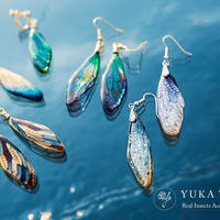 【蝉】【オーダーメイド】Cicada Pierce / Earring / Necklace