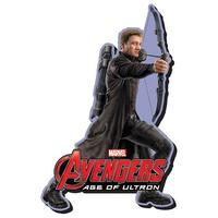 【USA直輸入】MARVEL ホークアイ エイジ オブ ウルトロン ファンキー チャンキー マグネット 磁石 マーベル アベンジャーズ    Age of Ultron   Hawkeye