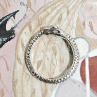 ウロボロスの指輪(メンズサイズ)