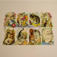 ドイツ クロモス 猫と小物・小動物