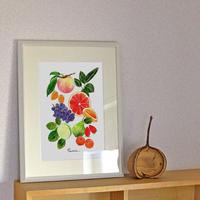 AP05 A4ポスター Fruits