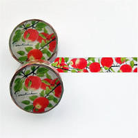 MT22 林檎のマスキングテープ