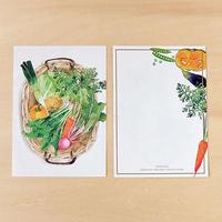 ME11 メモ紙 野菜かご