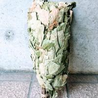 オーガニックサウナウィスク Oak (いわゆるナラ)2本セット