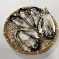 牡蠣お手玉(3こ入り)