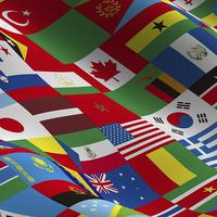 【日本+1カ国】付け替え式コンパクト国旗手旗 W300×H200mm 持ち棒30cm